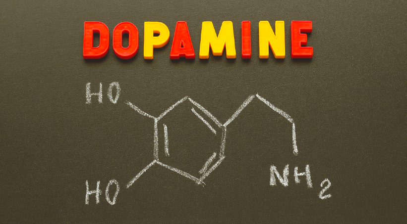 How Does Drug Use Affect Dopamine Receptors In Your Brain?